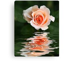 Peach Ripple Canvas Print