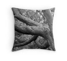 Study In Black & White Throw Pillow