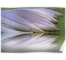 Canoes  Ready                           Poster