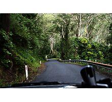 Driving Through Kangaroo Valley Photographic Print