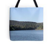 Wingham Brush Tote Bag