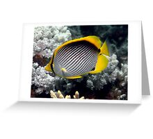 Adorable Butterfly Fish Greeting Card