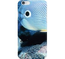 Adorable Butterfly Fish iPhone Case/Skin