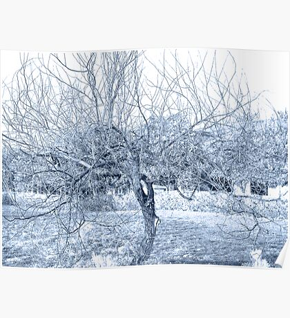 Blue Tree Wire Poster