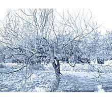 Blue Tree Wire Photographic Print