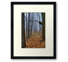 Foggy Wood Framed Print