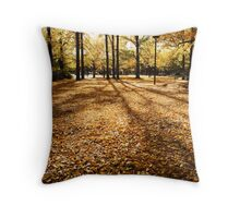 Glebe Park Throw Pillow