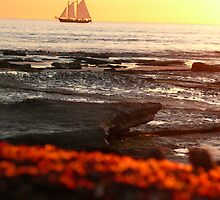 Sailing into the Broome sunset by manda76