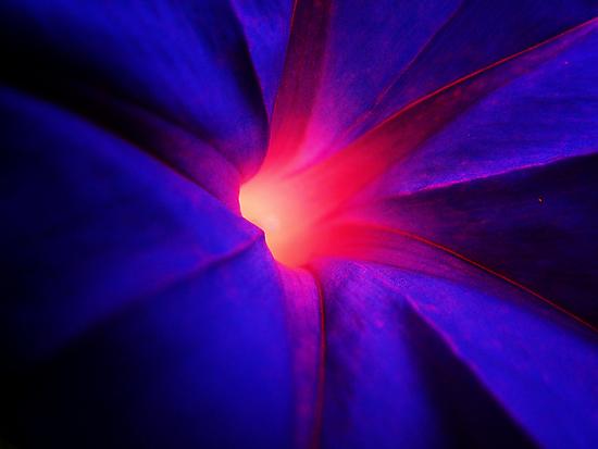 Glow by Andrew Woodman