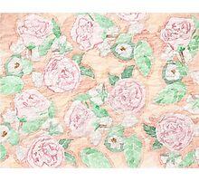 Spring Spray Rose  Photographic Print