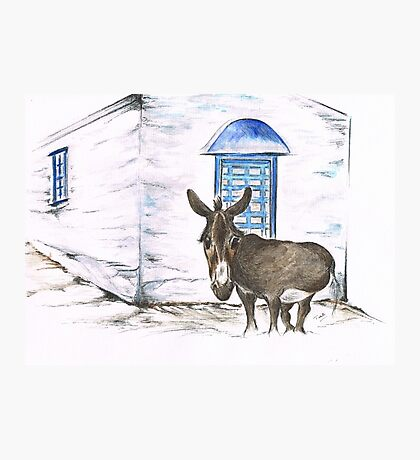 Greek Donkey Photographic Print