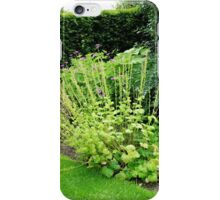 A Summer's Day at Hyde Hall iPhone Case/Skin