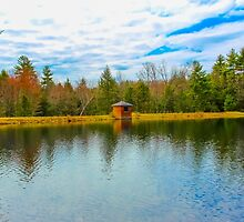 Little Building On A Lake by zcarey4