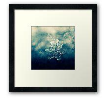 glamour snowflake Framed Print