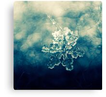 glamour snowflake Canvas Print
