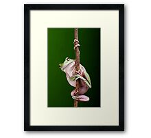 Pole Dancer Framed Print