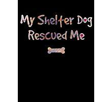 Dog Rescue - Shelter Dog Photographic Print