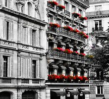 paris walk by Rosina  Lamberti