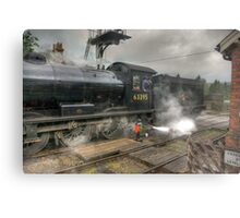 No.63395 On The Road Crossing Metal Print