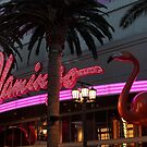 The Flamingo Las Vegas ........... by DonnaMoore