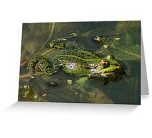 Four Eyed frog Greeting Card