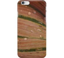 After the rian iPhone Case/Skin