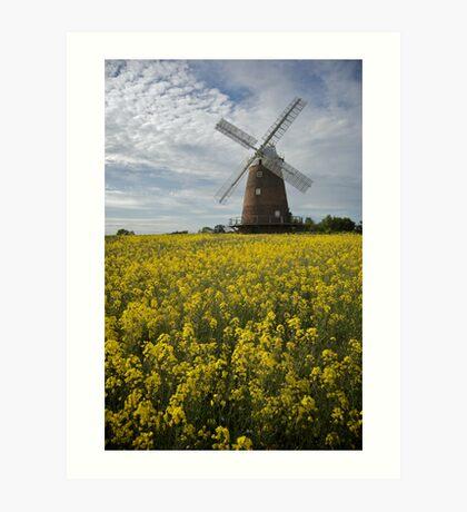 Thaxted Windmill Art Print