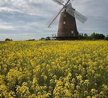 Thaxted Windmill by Gary  Smith