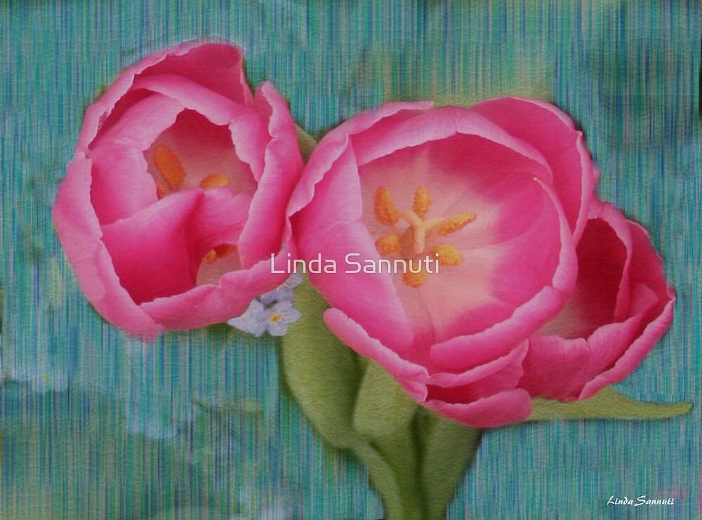 Painted Tulips by Linda Sannuti