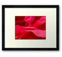no other Framed Print