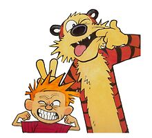Calvin and Hobbes Duo by mikelpegel