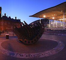 The Senedd, Cardiff Bay by Michael Field