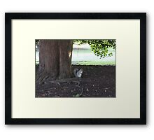 At The Root Of It Framed Print