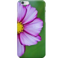 cosmos painted iPhone Case/Skin