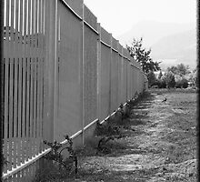 Fence stretch by morfacer