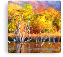 Colours of Kunnunurra 1 Canvas Print