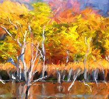Colours of Kunnunurra 1 by Julia Harwood