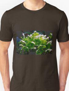 Erin Go Bract Unisex T-Shirt