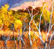 Colors of Kununurra 2 by Julia Harwood