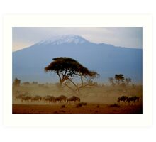Kilimanjaro Art Print