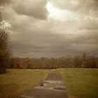 After the Storm by Lindsaycope