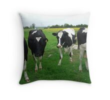 Cows in field Throw Pillow