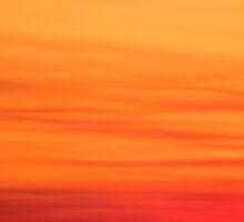 Orange sunset by Julia Harwood