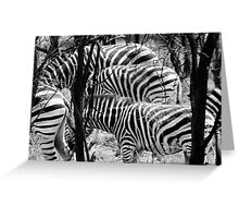 Never Ending Stripes Greeting Card