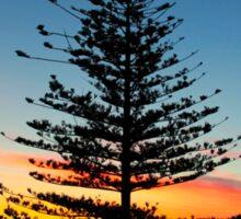 Beautiful Sunrise In Torquay, Australia Sticker