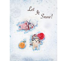 Holiday Crochet Critter Card Photographic Print