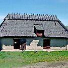 Makowichuk Barn, Ukrainian Cultural & Heritage Village, near Edmonton, Alberta, Canada by Adrian Paul