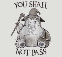 You Shall Not Pass by ginabelluni