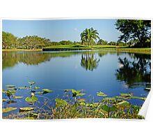Lake in Weston, Florida Poster