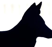 Dog Silhouette by AnnDixon